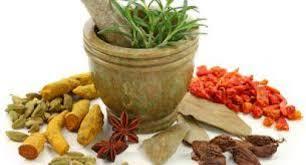 6 obat kuat herbal untuk pria tahan lama bercinta terbukti ampuh