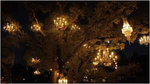 tree chandelier los angeles s chandelier tree is a magical playground citylab