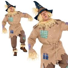the wizard of oz wizard costume mens mr scarecrow wizard of oz fancy dress costume adults