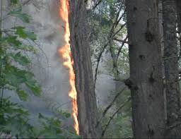 Wild Fire Columbia Gorge by Residents Threatened By The Highway 141 Fire On The Washington