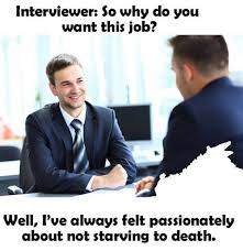 Job Memes - so why do you want this job meme