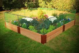 planting vegetable garden fence ideas pictures vegetable garden