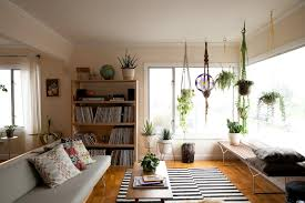 home design some small green living room plant on pot with soft