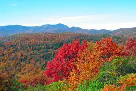 fall color in the blue ridge mountains near asheville nc