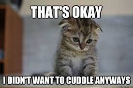 Cuddle Buddy Meme - 56 of the best cuddle memes best wishes and quotes com words