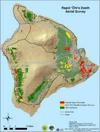 Map Of Hawaii Big Island Hawaii Ohia Tree Die Off Bigger Than Thought