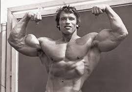 The Best Way To Build by How To Get Big Biceps Fast Arnold U0027s Top Tips