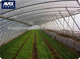 Backyard Green House by Backyard Greenhouse Backyard Greenhouse Suppliers And
