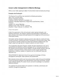 general resume exles education classic cover letter for resume exles