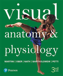 Best Anatomy And Physiology Textbook Anatomy U0026 Physiology