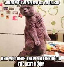 Morpheus Cat Meme - 100 parenting memes that will keep you laughing for hours
