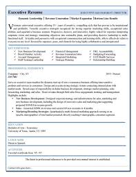 executive resume templates word executive resume template cv the 25 best functional ideas on
