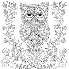 coloring page for adults owl owl coloring pages for adults owl coloring books and owl coloring