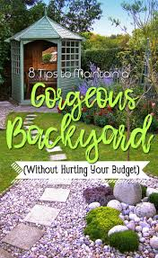 8 tips to maintain a gorgeous backyard without hurting your