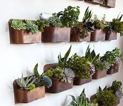Wall Hanging Planters by Best 25 Indoor Wall Planters Ideas Only On Pinterest Herb Wall