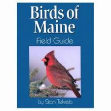 birds of maine field guide daytrip society