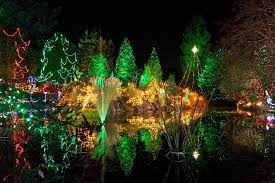 Vandusen Botanical Garden Lights Vandusen Botanical Garden S Festival Of Lights Brightens Winter