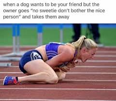 Track And Field Memes - 30 funny memes that will make your day drollfeed
