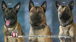belgian shepherd navy seals fargo police department k9 u0027s earl falco u0026 bali to get body armor