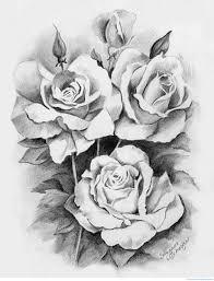 draw beautiful roses creative artistic people tattoo help