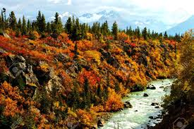 Alaska scenery images Alaska river stock photo picture and royalty free image image jpg