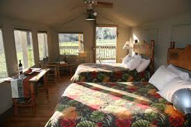 safari west glamping com on an african wildlife safari alongside romping herds of exotic wildlife or relax in a luxury safari tent under the gaze of a graceful giraffe
