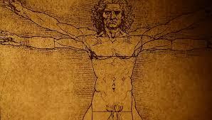 Leonardo Da Vinci Human Anatomy Drawings Close Up Of Old Anatomy Drawings By Leonardo Da Vinci Stock