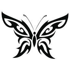 14 best butterfly images on butterflies butterfly