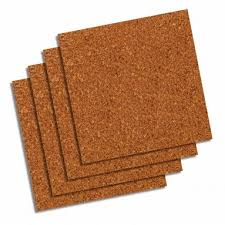 Cork Mats For Bathrooms Everything You Ever Wanted To Know About Cork Flooring And Then Some