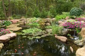 Aquascape Ponds Your Pond A Balanced Ecosystem Aquascape Inc