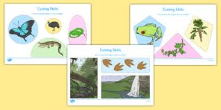 australian tropical rainforest habitat cutting skills worksheet
