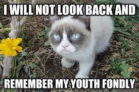 Grumpy Cat Meme Happy - 35 most funniest grumpy cat memes on the internet