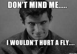 Fly Meme - i wouldn t hurt a fly meme on imgur