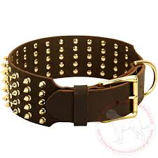 dog necklace leather images Purchase wide brass spiked cane corso collar dog walking jpg