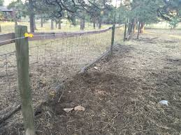 hog panel fencing costs backyard chickens