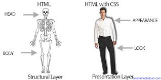 tutorial css design css tutorial learn css online html css tutorial