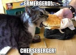 Er Mer Gerd Meme - image tagged in cheeseburger cats fast food imgflip