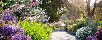 royal botanic garden venue hire