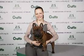 boxer dog crufts 2015 crufts 2009 results