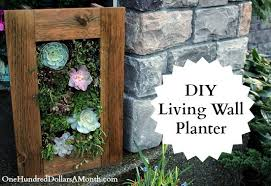 diy sedum and succulent living wall planter one hundred dollars