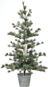 potted christmas tree best 25 potted christmas trees ideas on big christmas