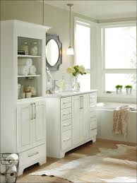 bathroom cabinets orange county ca home design inspirations