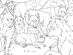 Anime Wolf Pack Coloring Pages 575471 Wolf Pack Coloring Pages