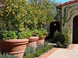 front yard vegetable garden landscape mediterranean with citrus