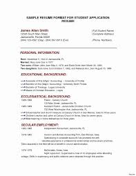 mba resume template mba resume template free sle for school business mba
