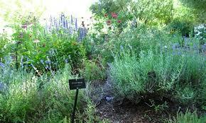 Sawtooth Botanical Garden Ketchum Idaho Sawtooth Botanical Garden Alltrips
