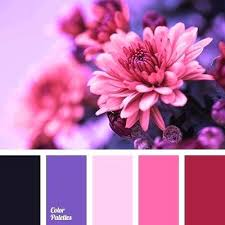 colors that match with purple what colours match purple image titled match colors step 9 colours