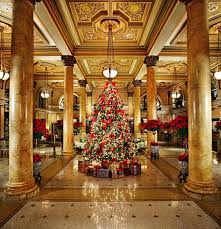 best christmas tree best christmas trees in america 11 unique attractions jetset