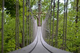 Treetop Canopy Tours by This Wisconsin Treetop Canopy Walk Is Thrilling