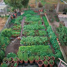 productive garden on a small urban lot vegetablegardener com